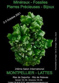 24a fiera internazionale della gioielleria dei minerali fossili
