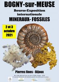 Fellowship della mostra internazionale dei minerali fossili