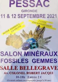 Fiera dei minerali fossili delle pietre preziose