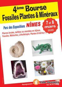 Quarto scambio di fossili, piante e minerali