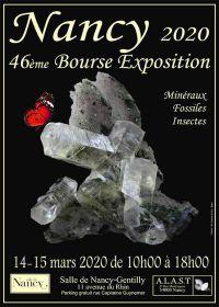 46esima mostra di borsa di minerali e insetti fossili