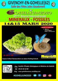 XIX scambio internazionale Gohellium 2020 di minerali fossili