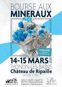 6 ° scambio di minerali e fossili