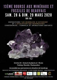 13 ° scambio di minerali e fossili