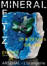 Fiera per minerali, fossili e gemme