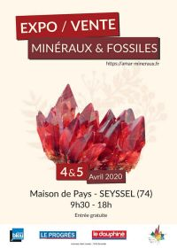 13a edizione vendita di minerali e fossili