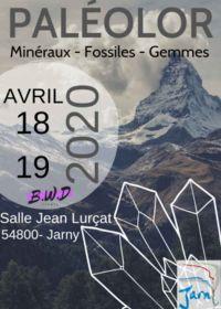 La 5a edizione del Fossil Minerals and Jewelry Show