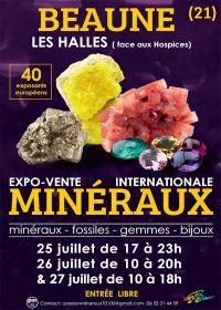 Fiera dei minerali e dei fossili