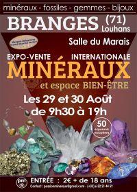Prima vendita di mostre espositive di minerali da Branges