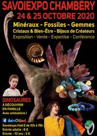 Minéralexpo Chambéry Minerali Fossili Gemme
