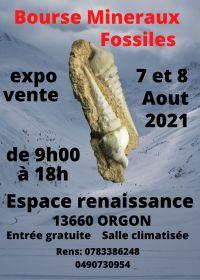 5 ° scambio di minerali fossili Orgon