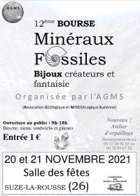 12° Scambio di minerali, fossili e gioielli