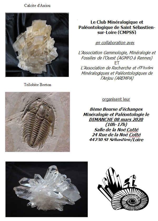 Ottavo scambio di minerali e fossili