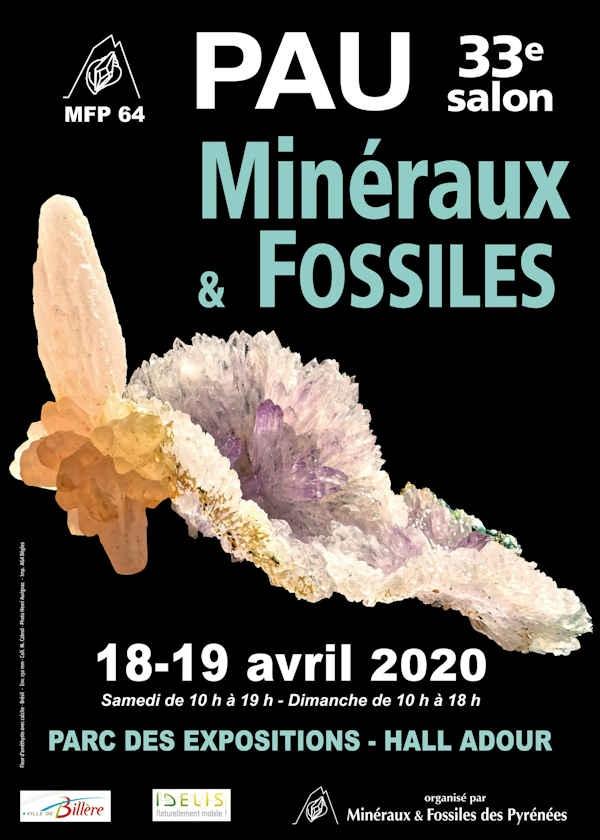 33 ° Esposizione di minerali e fossili