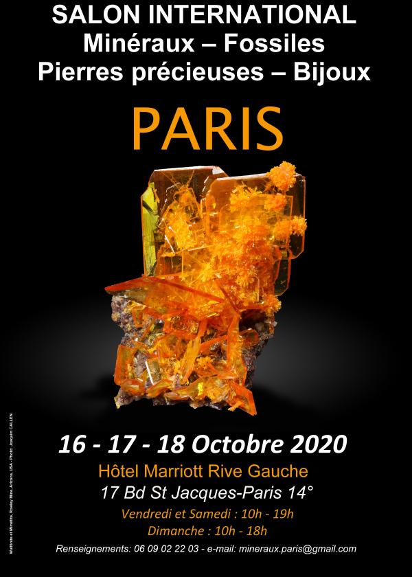 Fiera internazionale dei gioielli in pietre preziose minerali fossili di Parigi