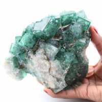 Cristalli cubici di fluorite verde su fluorite massiccia